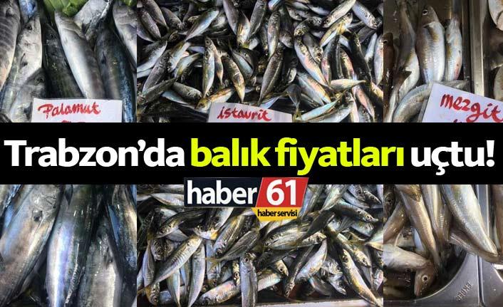 Trabzon'da balık fiyatları fındığı solladı