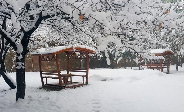 Gümüşhane'de kar yolları kapattı