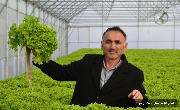 Kurduğu topraksız tarım sistemiyle yıllık 100 bin TL kazanmayı hedefliyor