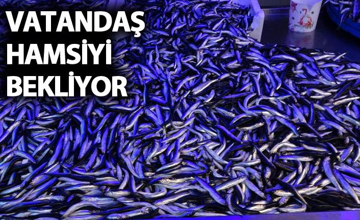 Trabzon'da vatandaş hamsiyi bekliyor