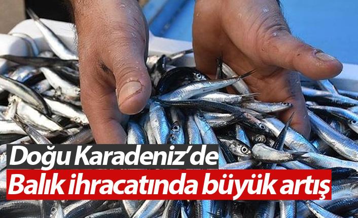 Doğu Karadeniz'de balık ihracatı arttı