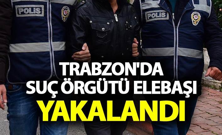 Trabzon'da suç örgütü elebaşı yakalandı
