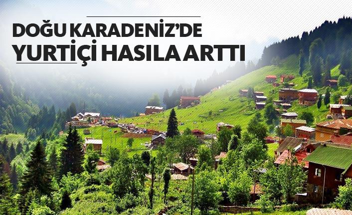 Doğu Karadeniz'de yurtiçi hasıla arttı