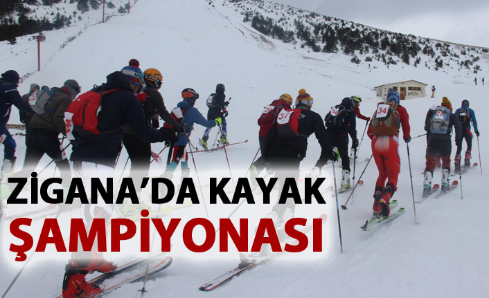 Zigana Dağı'nda kayak şampiyonası heyecanı
