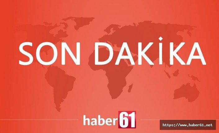 HDP'li ünlü sanatçı gözaltına alındı!