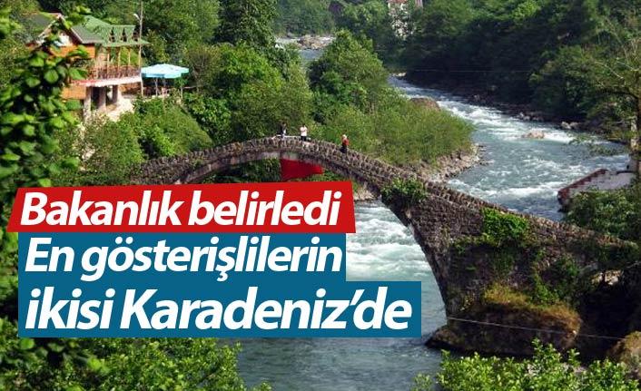 Türkiye'nin 13 gösterişli köprüsünden ikisi Karadeniz'de