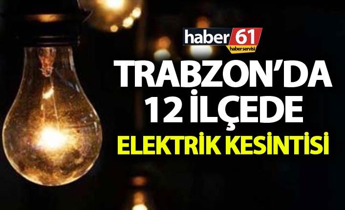 Trabzon'da 12 ilçede elektrik kesintisi