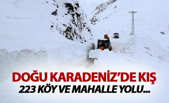 Doğu Karadeniz'de kış - 223 köy ve mahalle yolu ulaşıma kapalı
