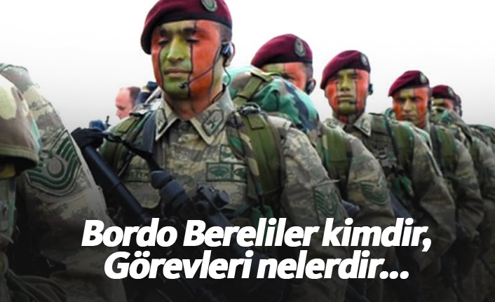 Bordo Bereliler kimdir, Görevleri nelerdir...