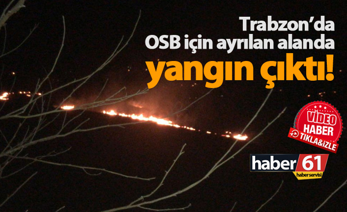 Vakfıkebir'de OSB alanında yangın