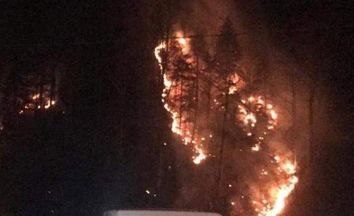 Kış aylarında orman yangını şoku