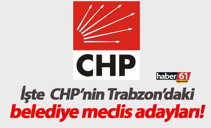 CHP belediye meclis adayları belli oldu