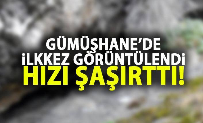 Tunceli'nin ardından Gümüşhane'de ortaya çıktı