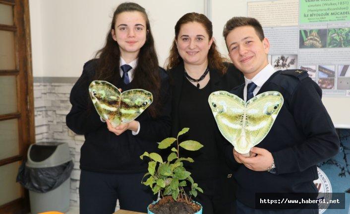 Vampir kelebeklere biyolojik savaş açtı