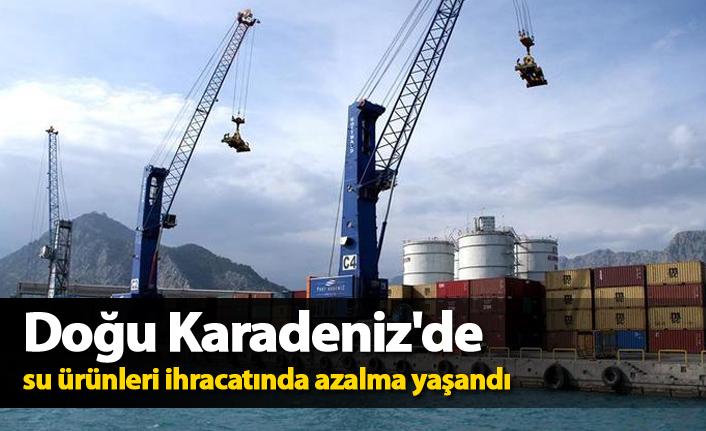 Doğu Karadeniz'de su ürünleri ihracatında azalma yaşandı