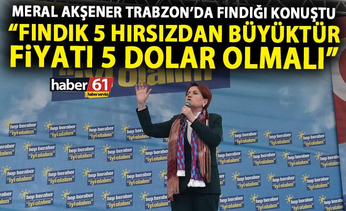 Meral Akşener: Fındık 5 hırsızdan büyüktür! Fiyatı 5 dolar olmalı!