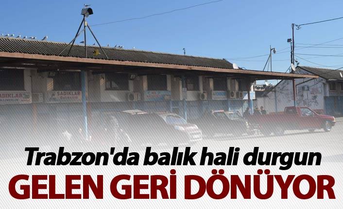 Trabzon'da balık hali durgun - Gelen geri dönüyor