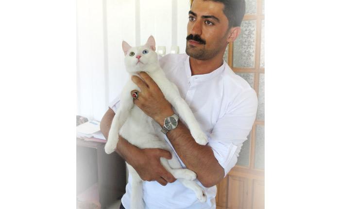 Beşinci kattan düşen kedisi için 190 bin lira harcadı