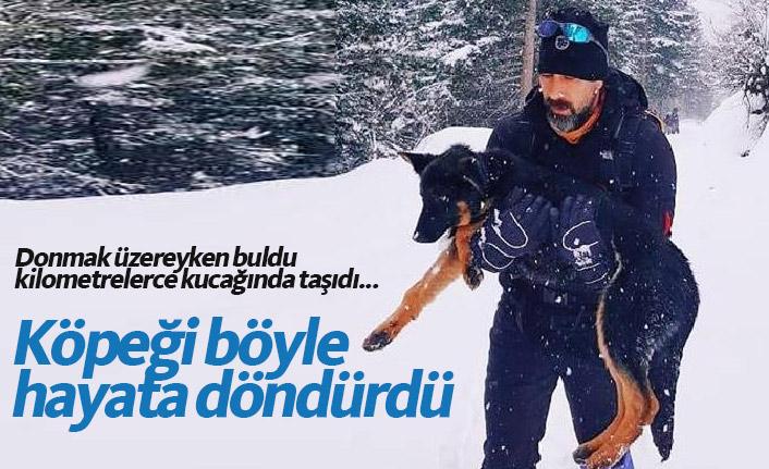 Trabzon'da donmak üzere bulduğu köpeği kilometrelerce taşıyıp kurtardı