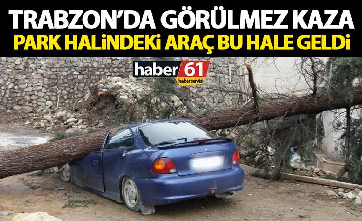 Ağaç devrildi! Araç kullanılamaz hale geldi