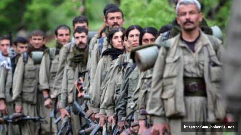 PKK paniğe kapılıp köşeye sıkıştı!
