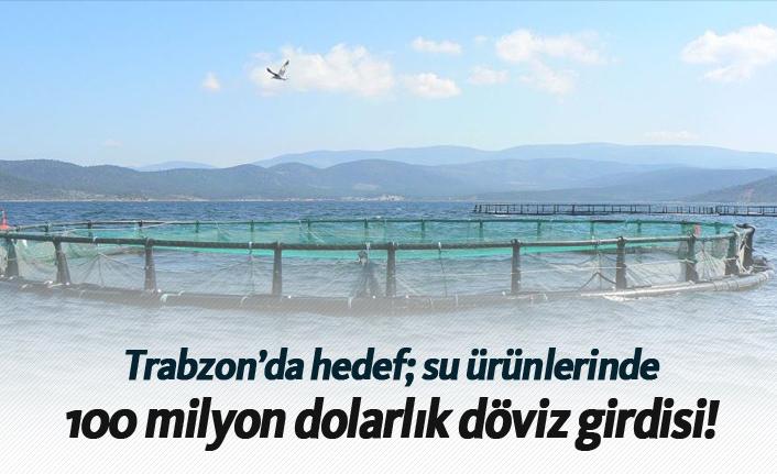 Trabzon'da hedef su ürünlerinde 100 milyon dolarlık döviz girdisi!