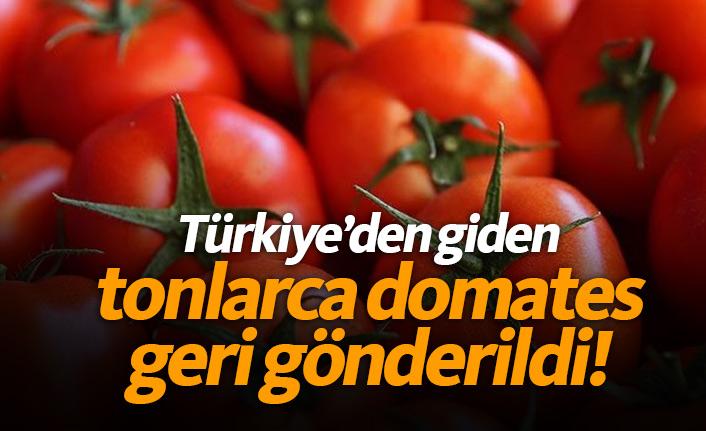 Tonlarca domates geri gönderildi