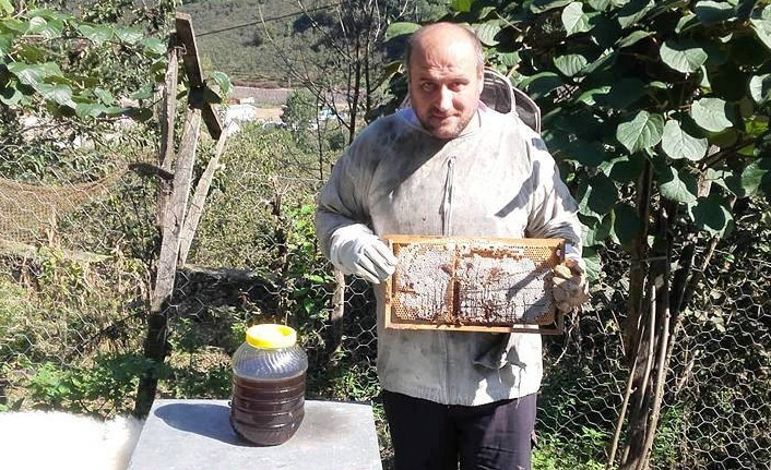 Arıcılar süt sağımına başladı