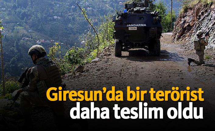 Giresun'da bir terörist daha teslim oldu