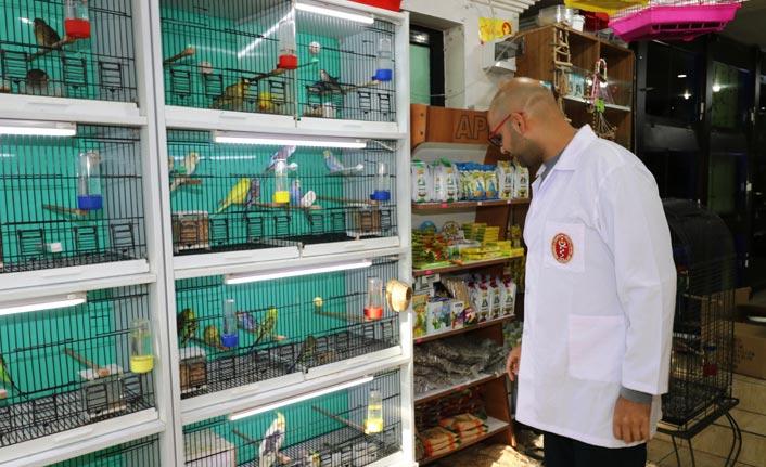 Samsun'da süs hayvanı satış yerleri denetleniyor!