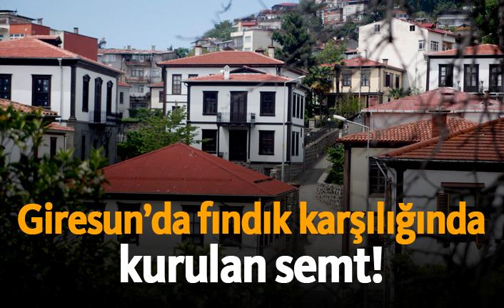 Giresun'da fındık karşılığında kurulan semt!