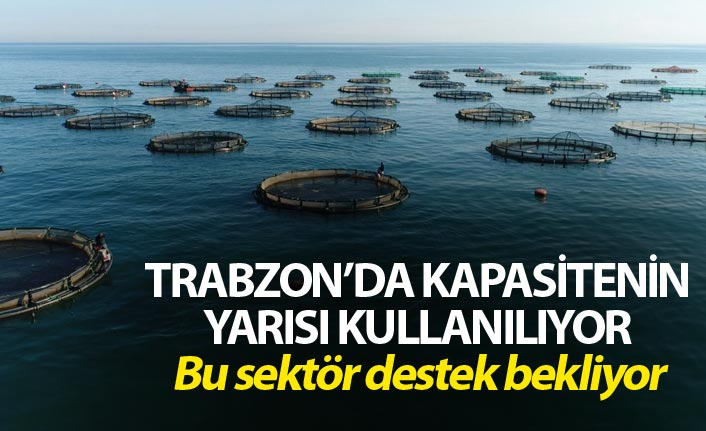 Trabzon'da kapasitenin yarısı kullanılan sektör destek bekliyor