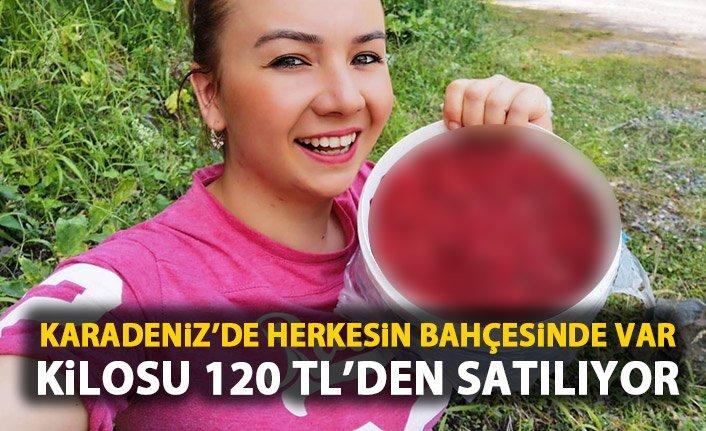 Karadeniz'de herkesin bahçesinde var! Kilosu 120 TL