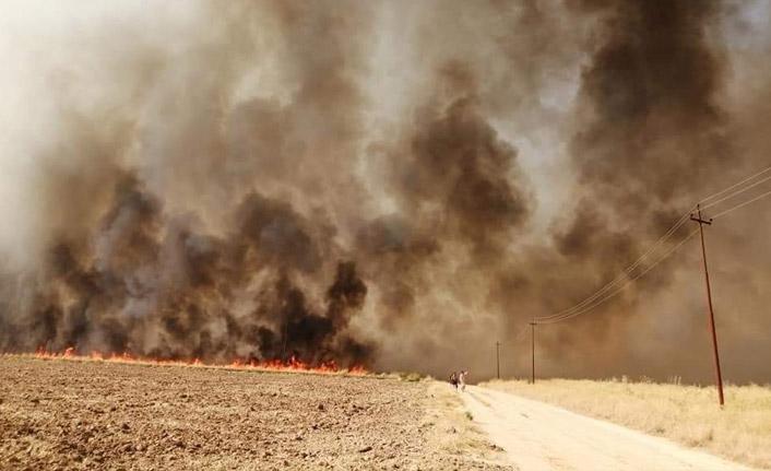 Irak'daki tarla yangınlarının sebebi belli oldu!