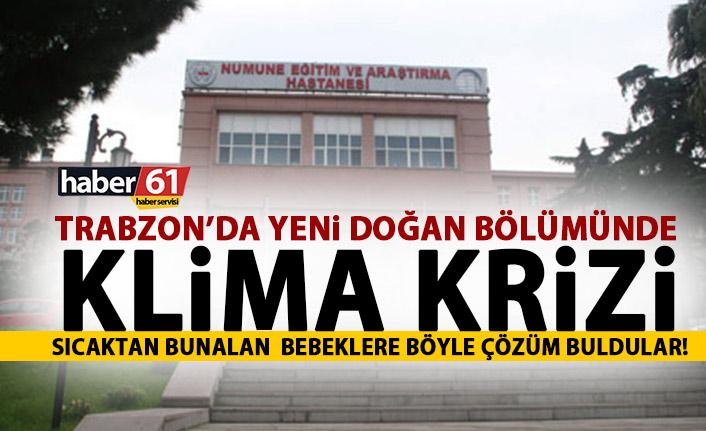 Trabzon'da Yeni Doğan Bölümünde klima krizi
