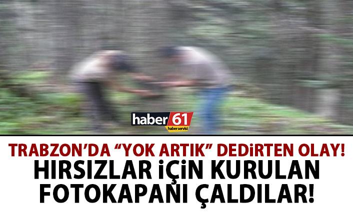 Trabzon'da hırsızları yakalamak için kurulan fotokapanları çaldılar!