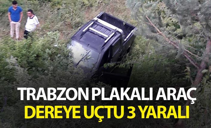 Trabzon plakalı araç dereye uçtu - 3 yaralı
