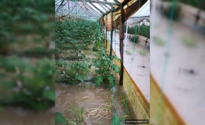 Seralardaki ürünler sular altında kaldı