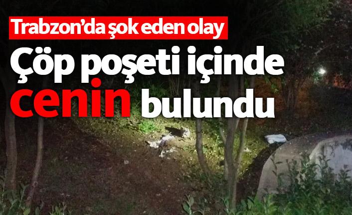 Trabzon'da çöp poşeti içinde cenin bulundu!