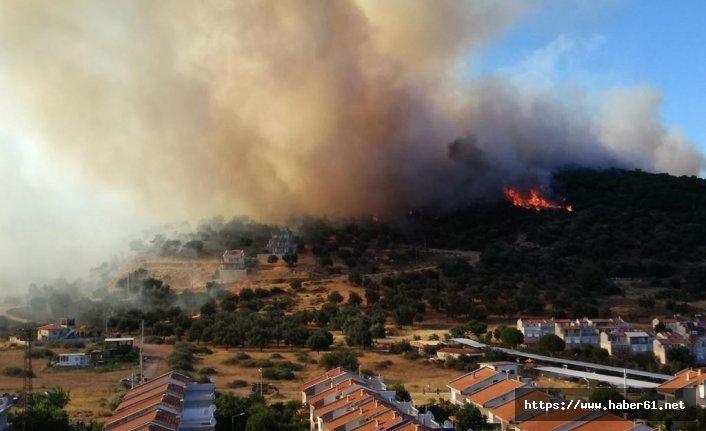 İzmir'de yangın yazlık evlere doğru ilerledi
