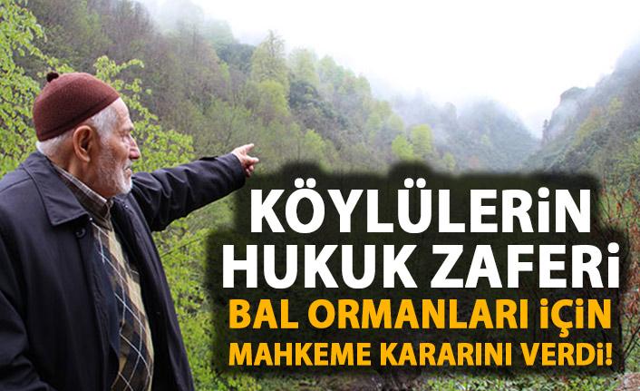 Bal Ormanları için mahkeme kararını verdi