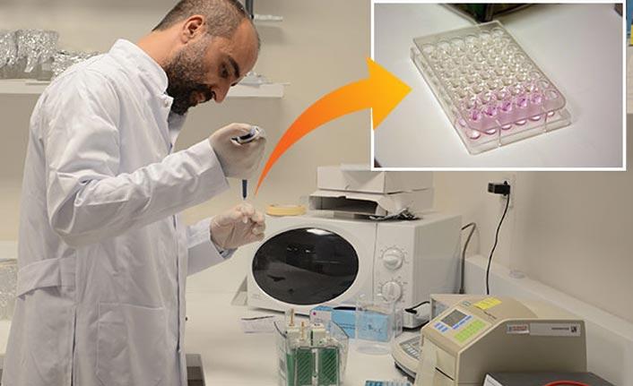 Türk bilim insanları harekete geçti! Tamamlandığında meme ve pankreas kanserine çare olacak