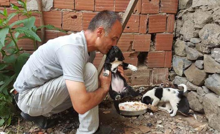 Köpeği dereye atan işçiye 'Hayvanlara Bakma' görevi