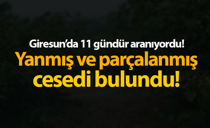 Giresun'da kayıp Şenel'in parçalanmış ve yanmış cesedi bulundu!