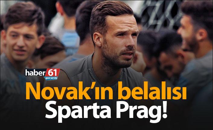 Novak'ın belalısı Sparta Prag!