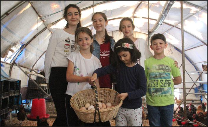 Samsun'da köylülerden örnek proje