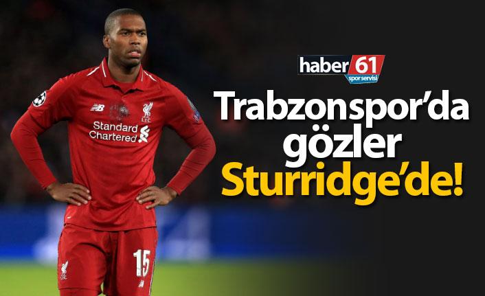 Trabzonspor'da gözler Sturridge'de!