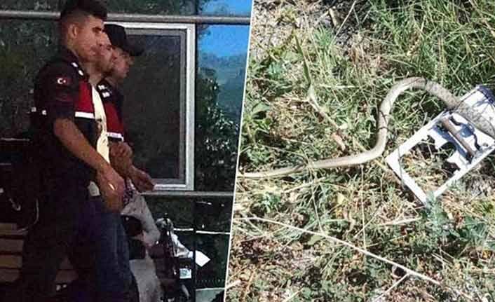Yılanı vurmak isterken hamile eşini öldürdü