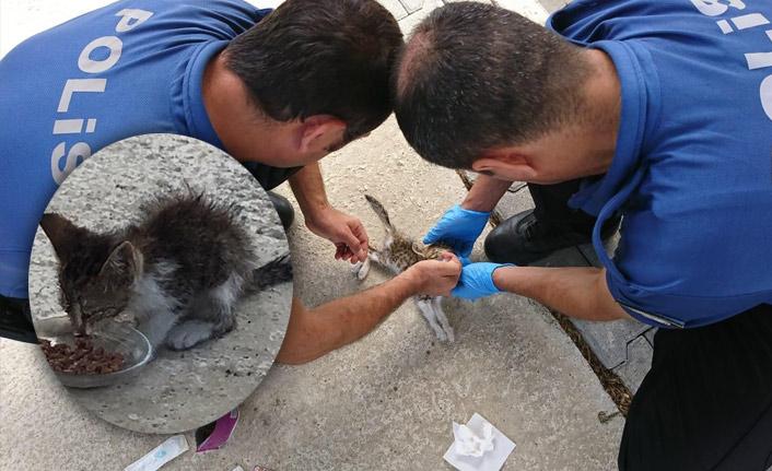 Polis memurları minik kedinin hayatını kurtardı