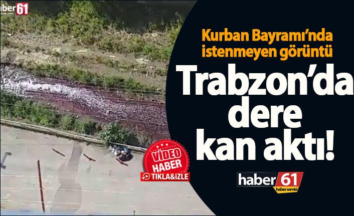 Trabzon'da dere kan aktı – Kurban Bayramında istenmeyen görüntü